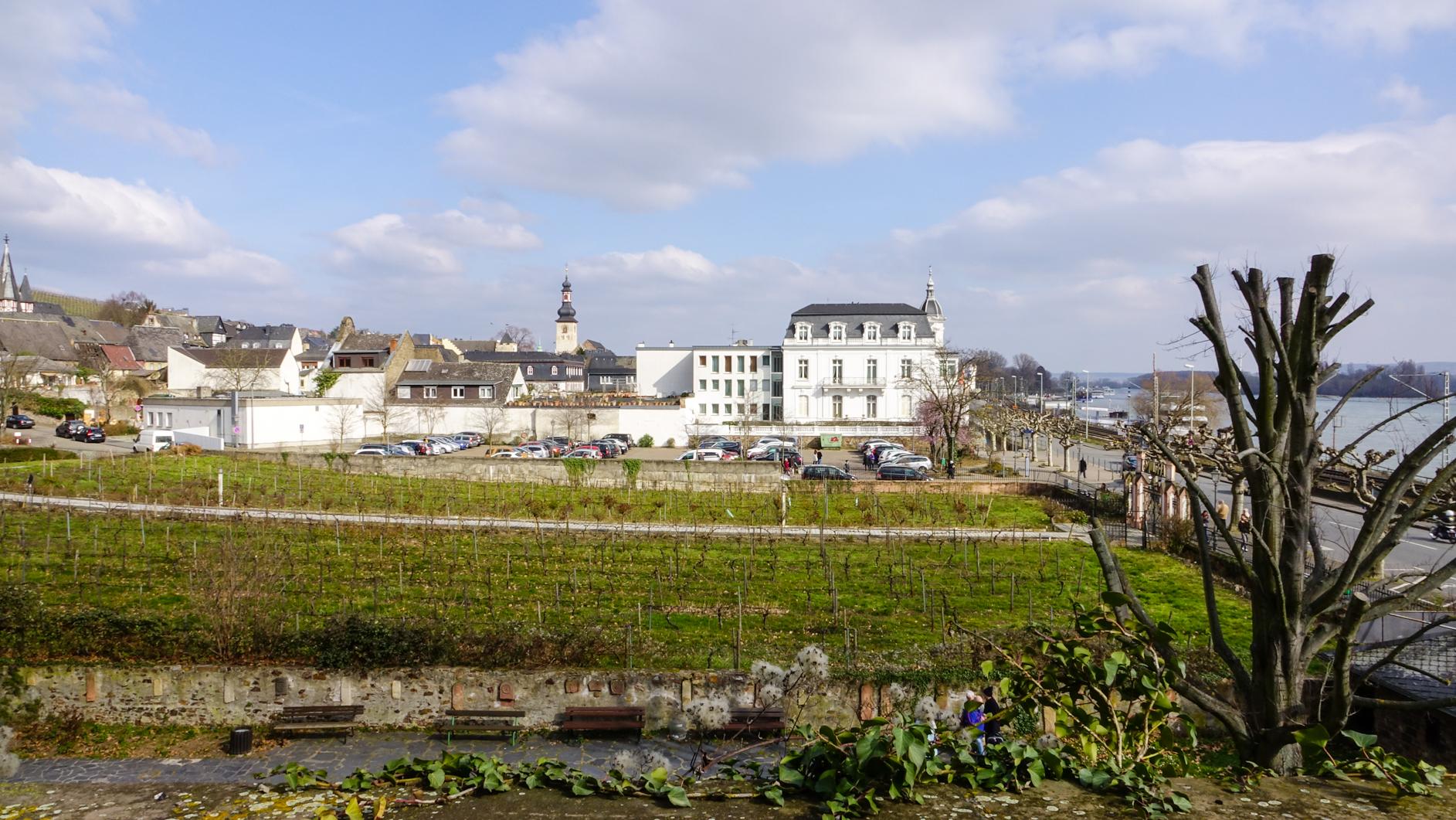 2016-03-Rüdesheim-148