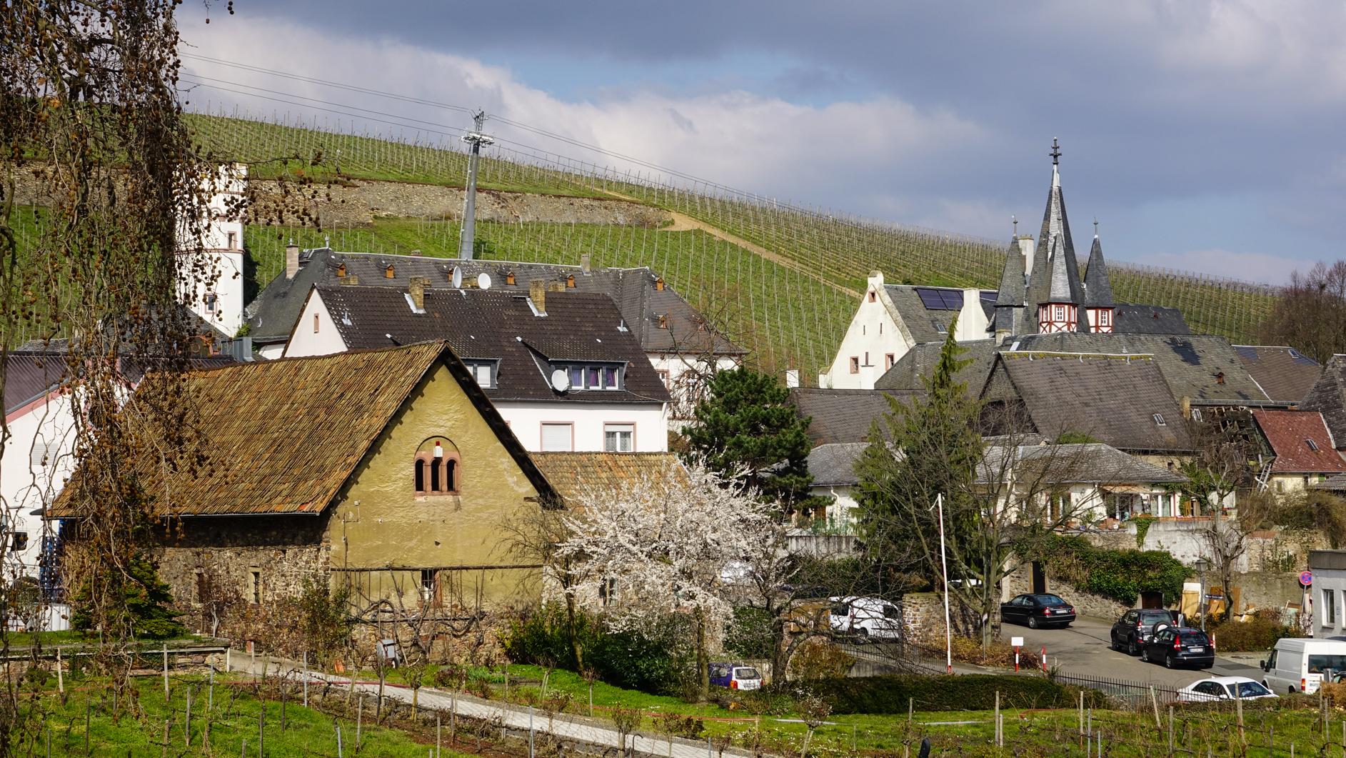 2016-03-Rüdesheim-154