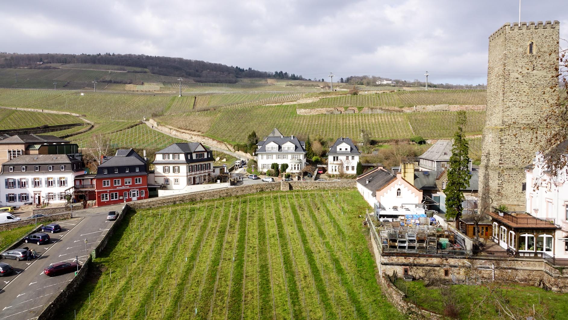 2016-03-Rüdesheim-162