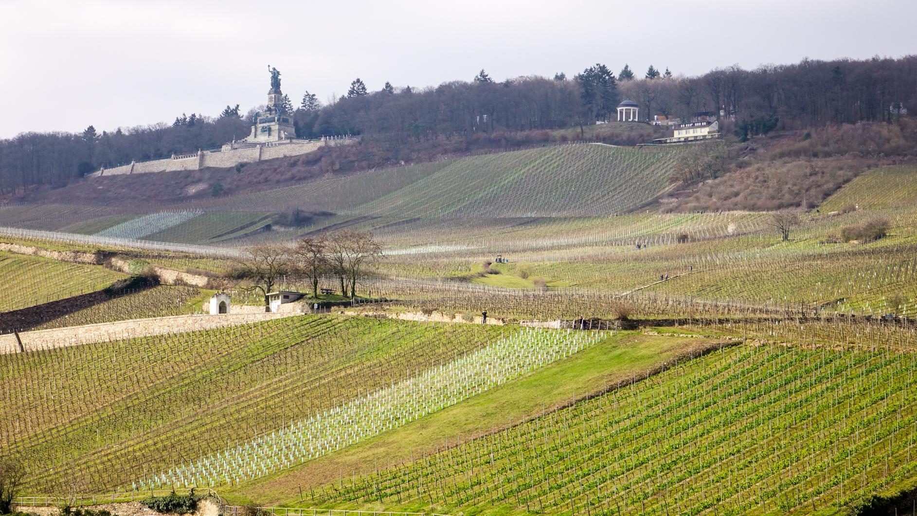 2016-03-Rüdesheim-164